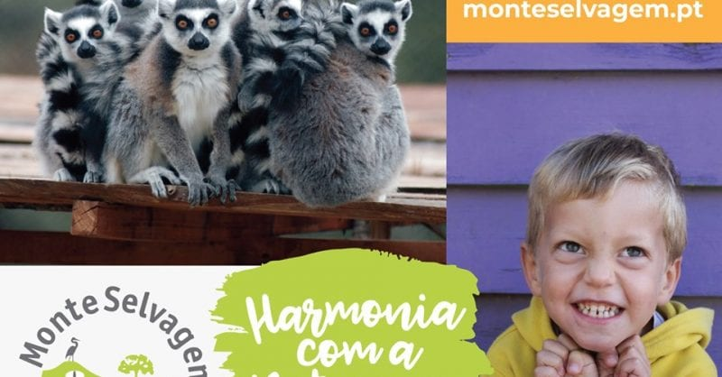Programa Educativo Monte Selvagem 2019/2020