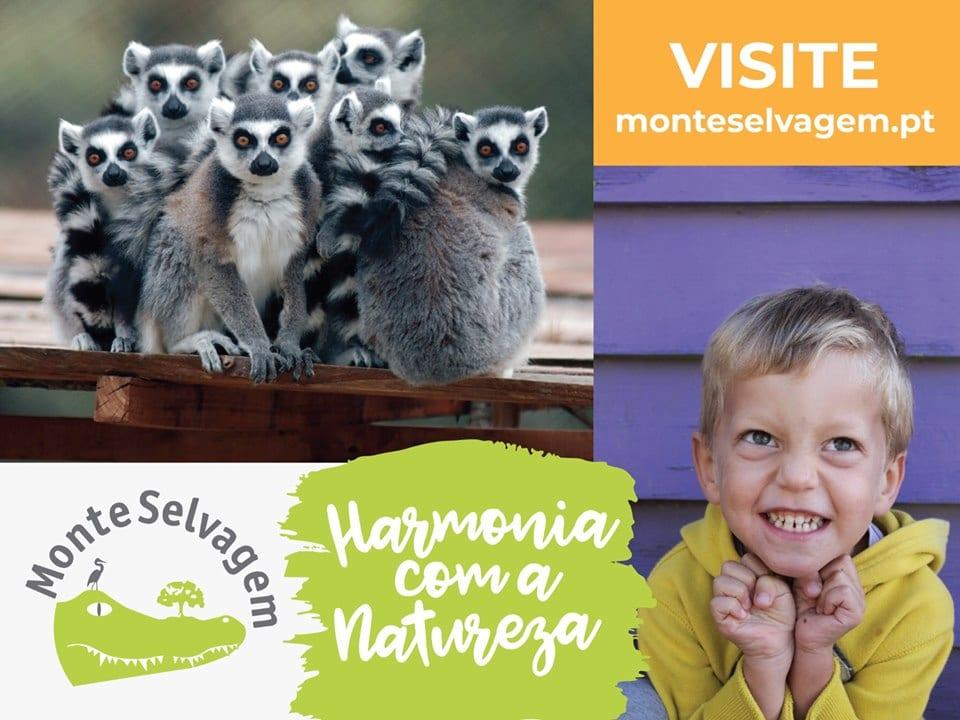 Programa Educativo Monte Selvagem 2019-2020