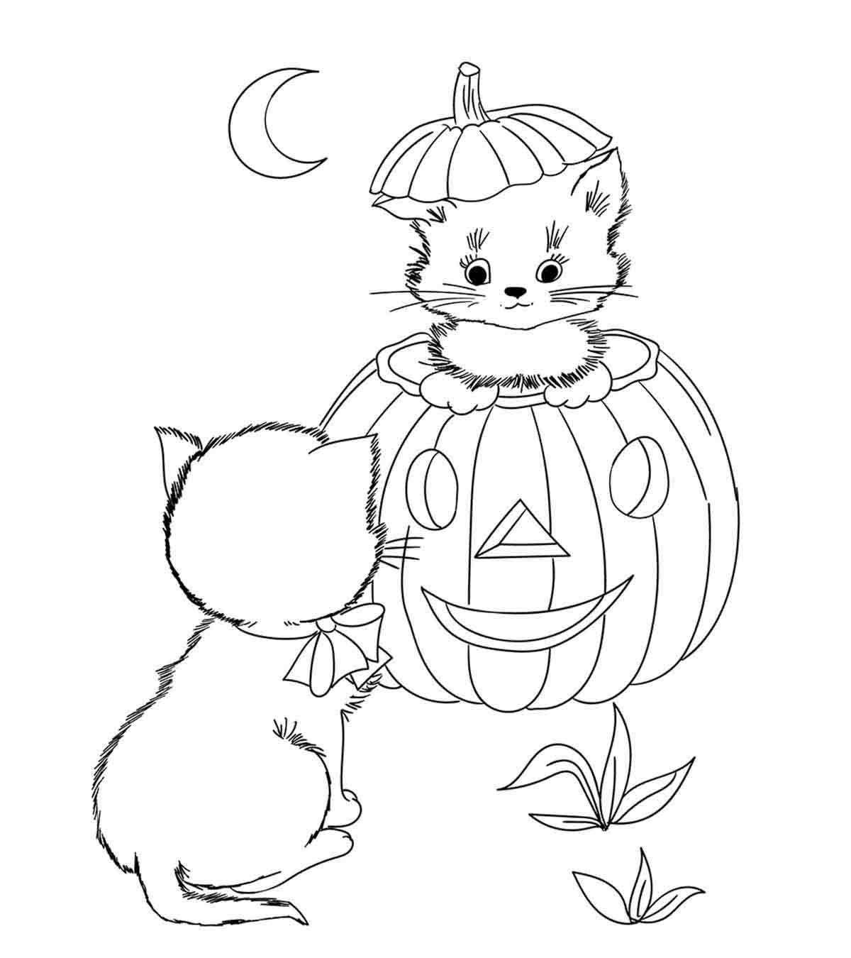 Desenhos De Halloween Tem Coragem De Os Pintar Pumpkin Pt