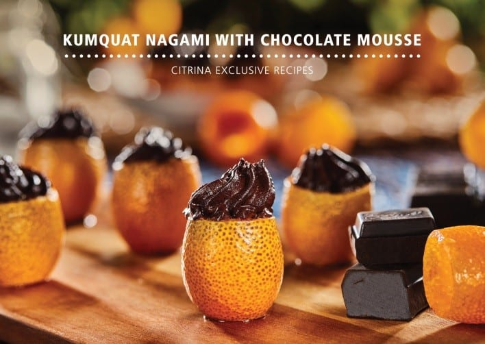 mousse de chocolate com kumquat nagami