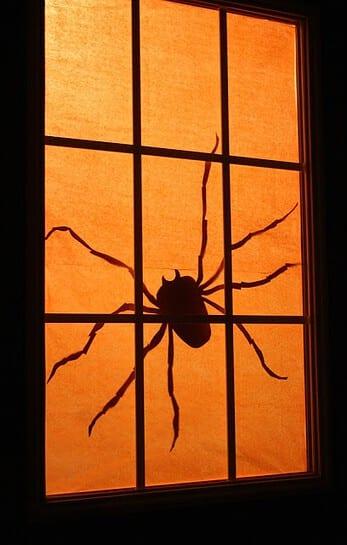 silhueta aranhas halloween