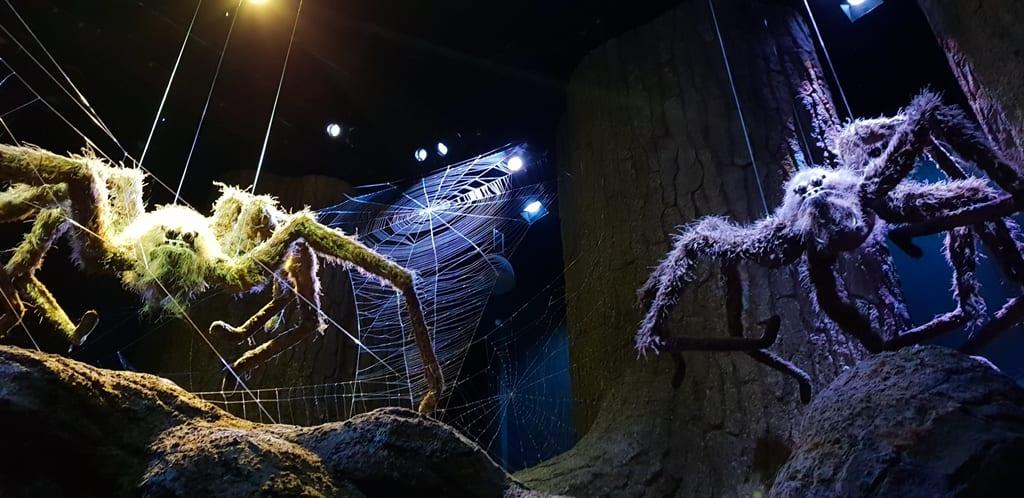 Floresta misteriosa e as Aranhas - Harry Potter Londres