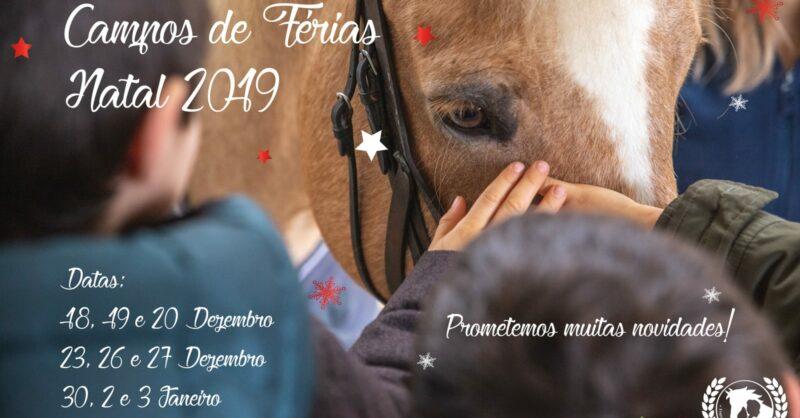 Férias de Natal no Pony Club com cavalos e póneis simpáticos