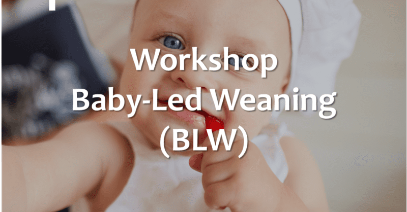Workshop Baby Led Weaning (BLW)