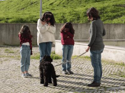 Os cães são nossos amigos!
