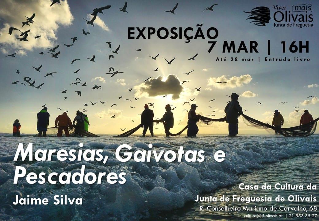EXPOSIÇÃO FOTOGRAFIA  Maresias, gaivotas e pescadores de Jaime Silva