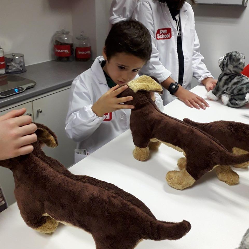 kidzania veterinário