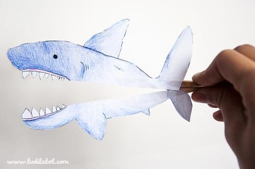 tubarão ludilabel