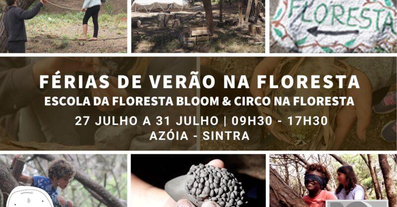 Férias de verão na Floresta: Escola da Floresta Bloom & Circo na Floresta