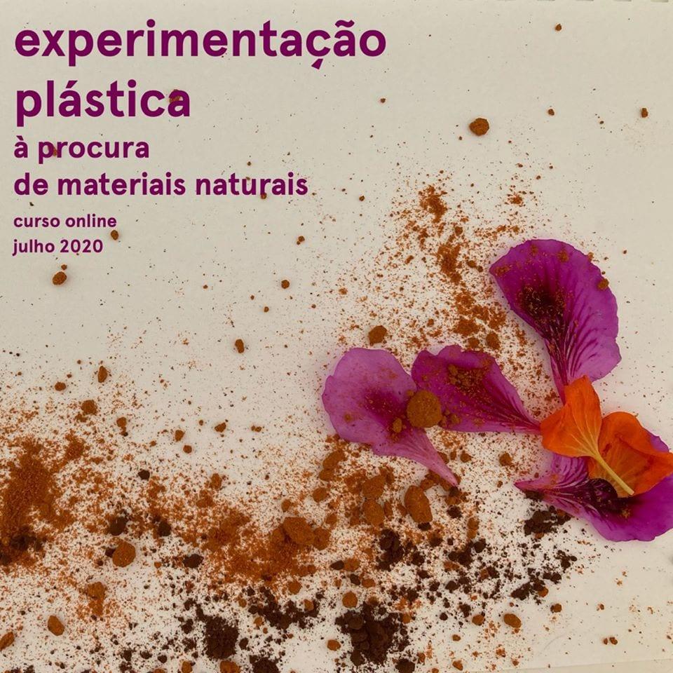 Experimentação plástica