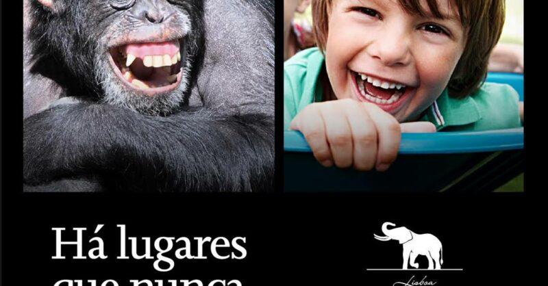 Passatempo: Bilhetes para o Jardim Zoológico de Lisboa!