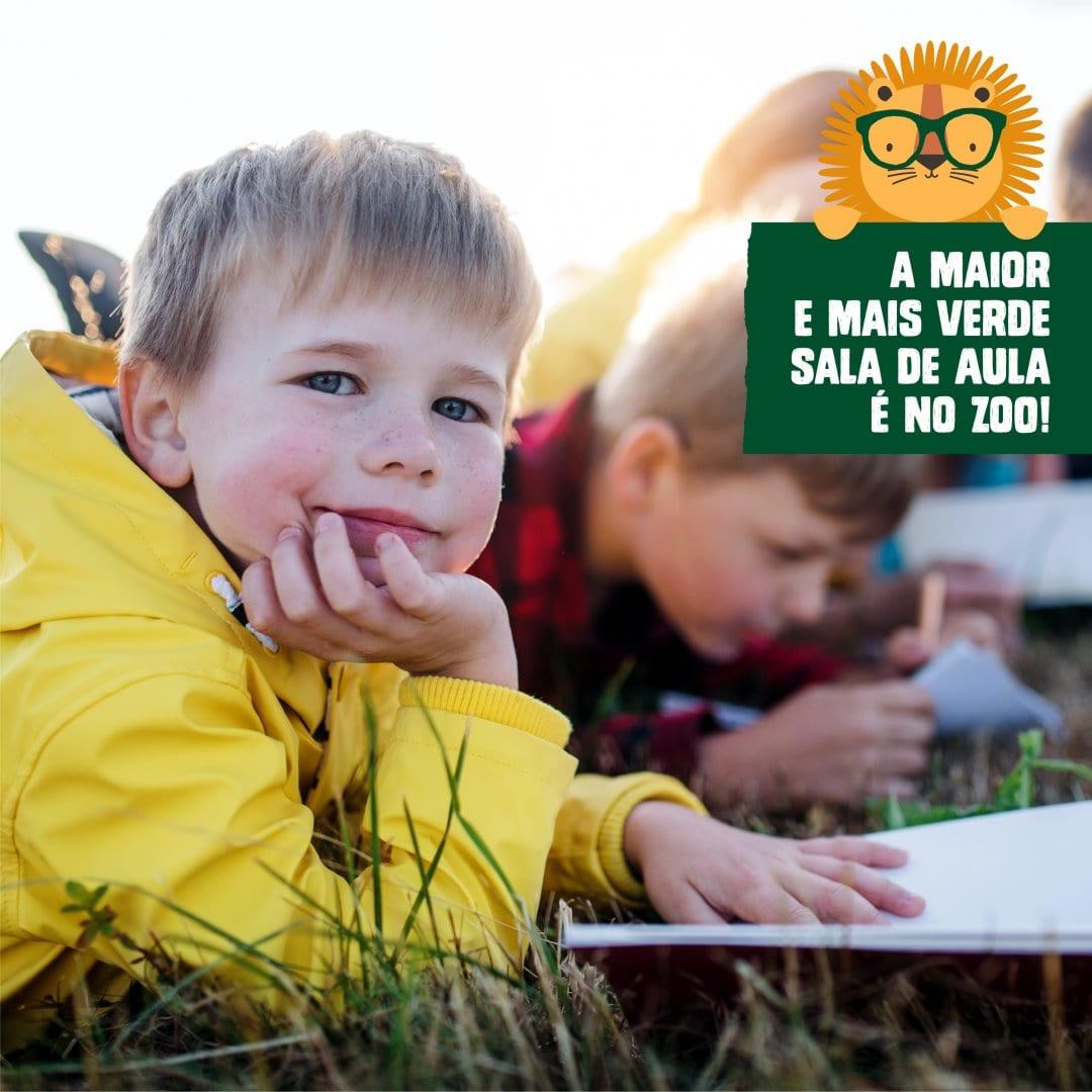 Zoo Santo Inácio Aulas ao Ar Livre