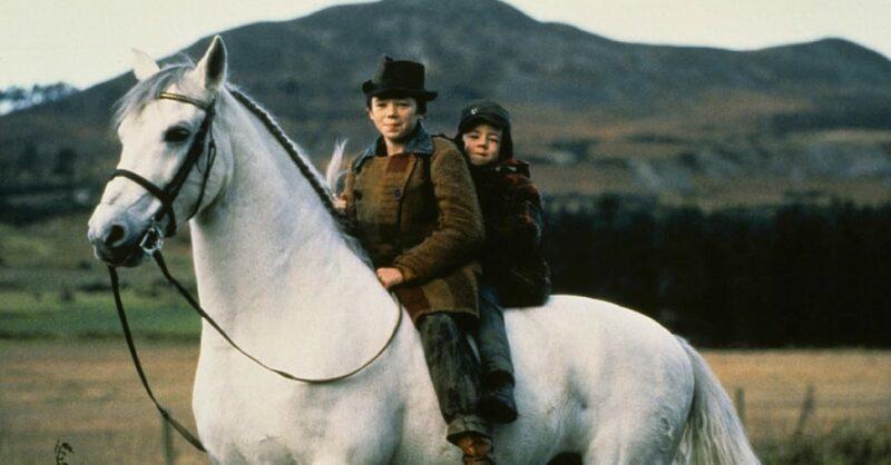Sessão de Cinema: O Caminho do Oeste