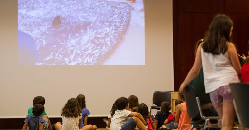 Programa Educativo Gulbenkian: Visitas de Estudo Online