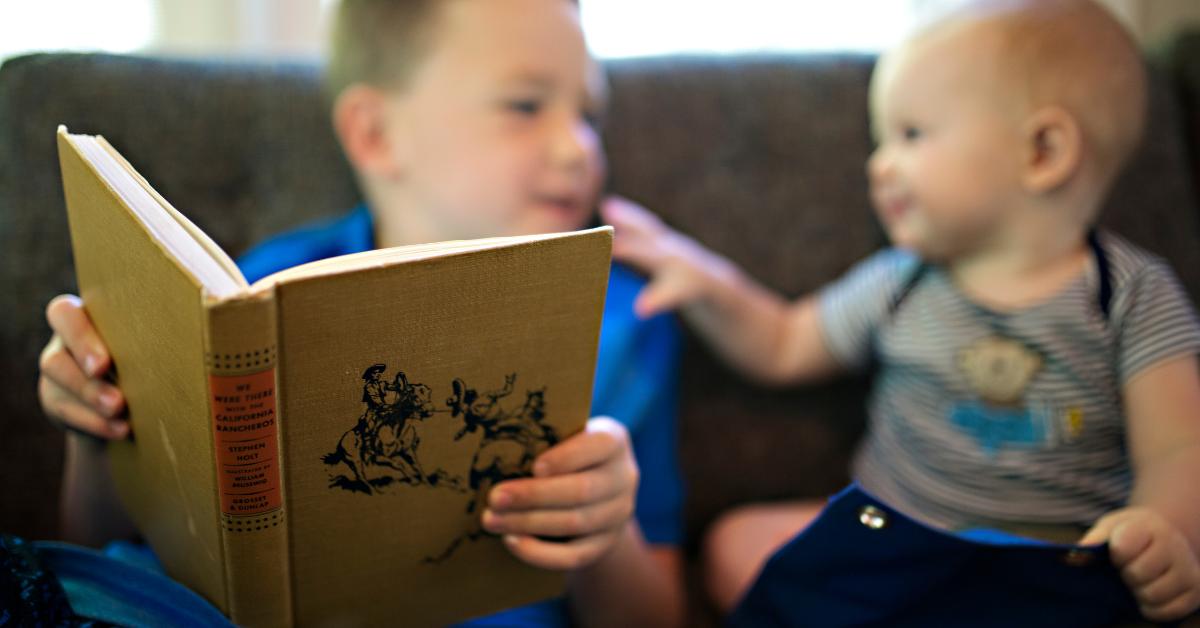 livros sobre irmãos