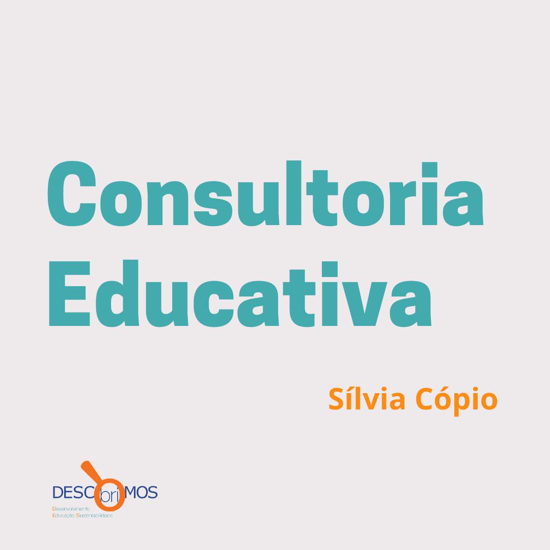 Consultoria Educativa com Mentoria personalizada