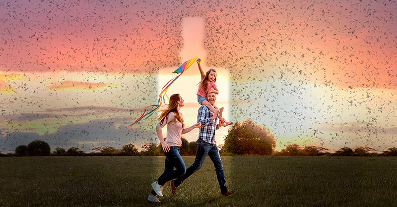 4 ideias para desconfinar ao ar livre