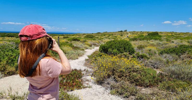 Fotografias de natureza e paisagem: todas as dicas para recordações incríveis!